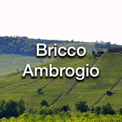 Bricco Ambrogio