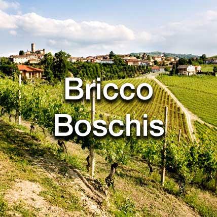 Bricco Boschis