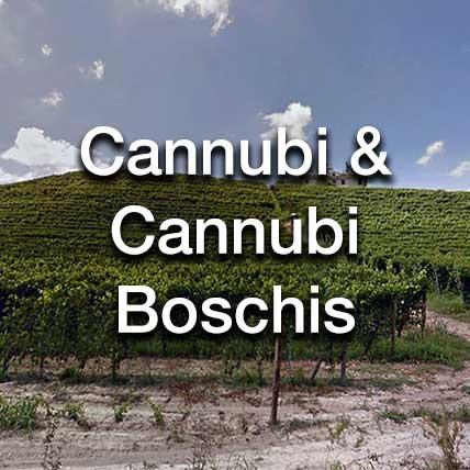 Cannubi & Cannubi Boschis